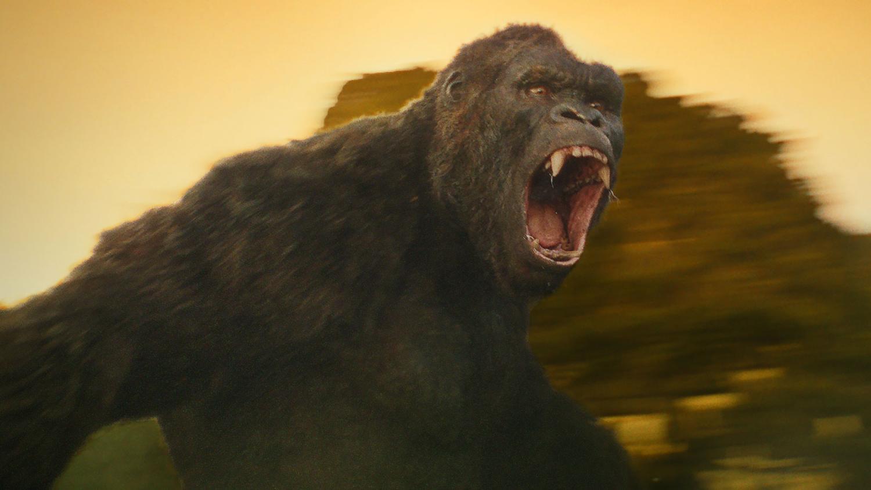 Kong: Wyspa Czaszki - goryl