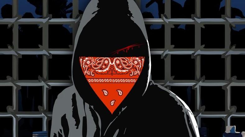 Polski cyberprzestępca - Armaged0n został aresztowany