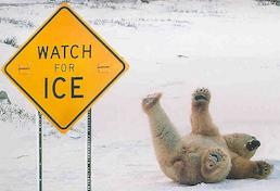 Uważaj na lód!