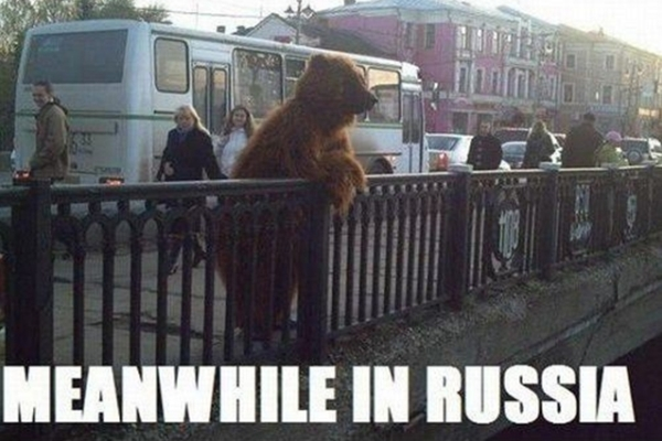 meanwhile-in-russia-bear