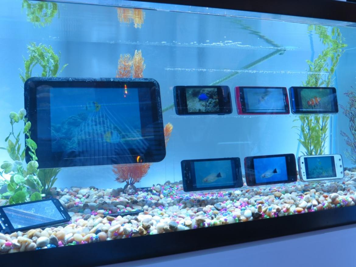 215900-fujitsu-shows-off-waterproof-smartphones-and-tablet-at-ces-2012-photos