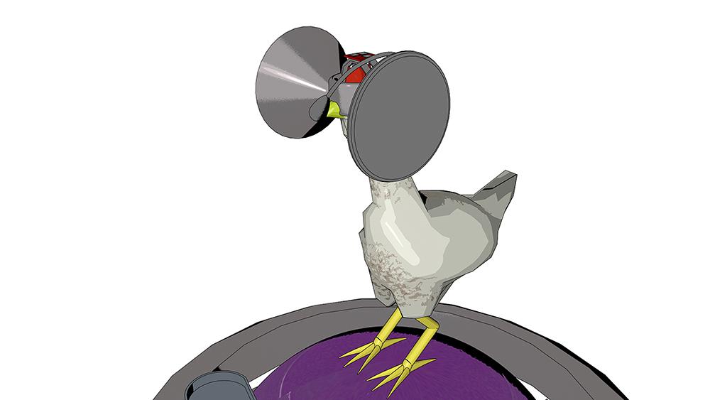 Oculus dla kur