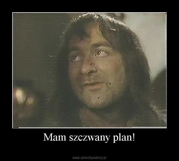 mam plan