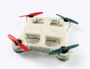 dron grzybnia