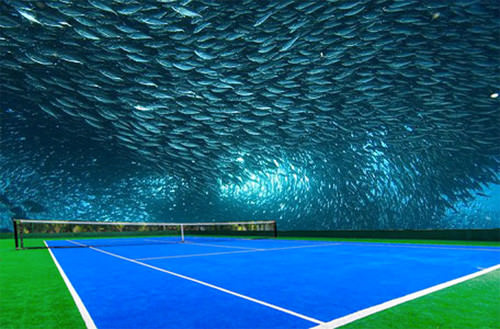 kort tenisowy 2