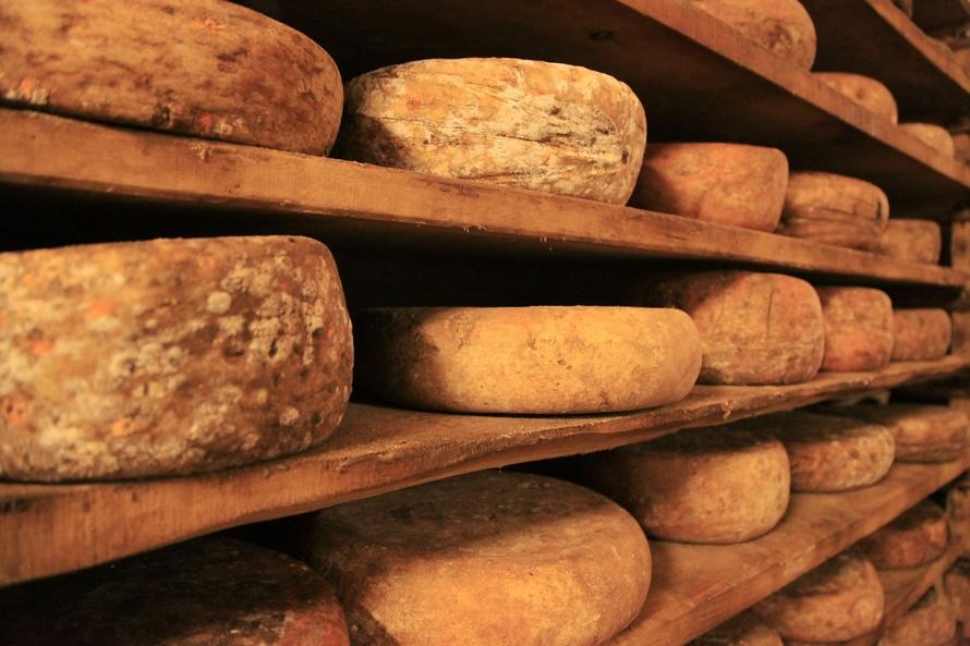 food-italian-italy-cheese-large