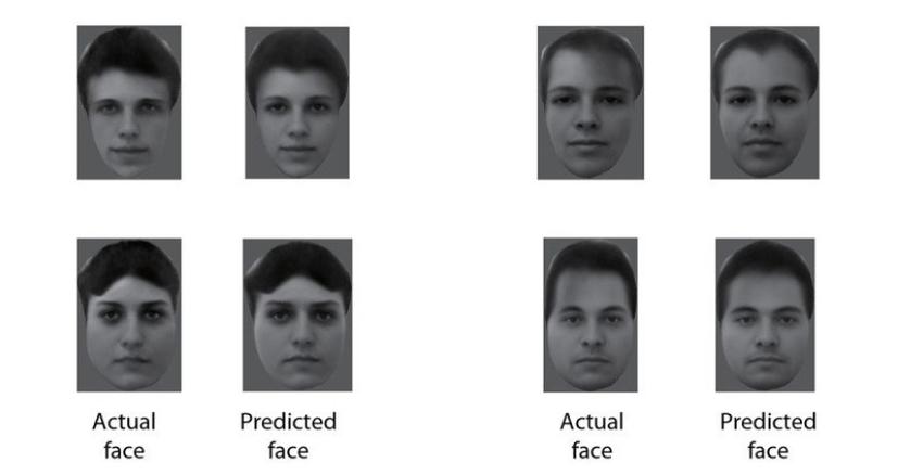 prawdziwa i przewidziana twarz
