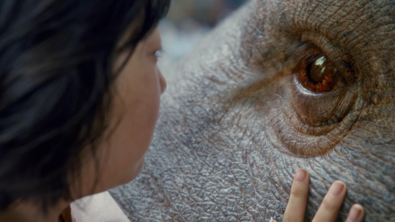 kadr z filmu Okja
