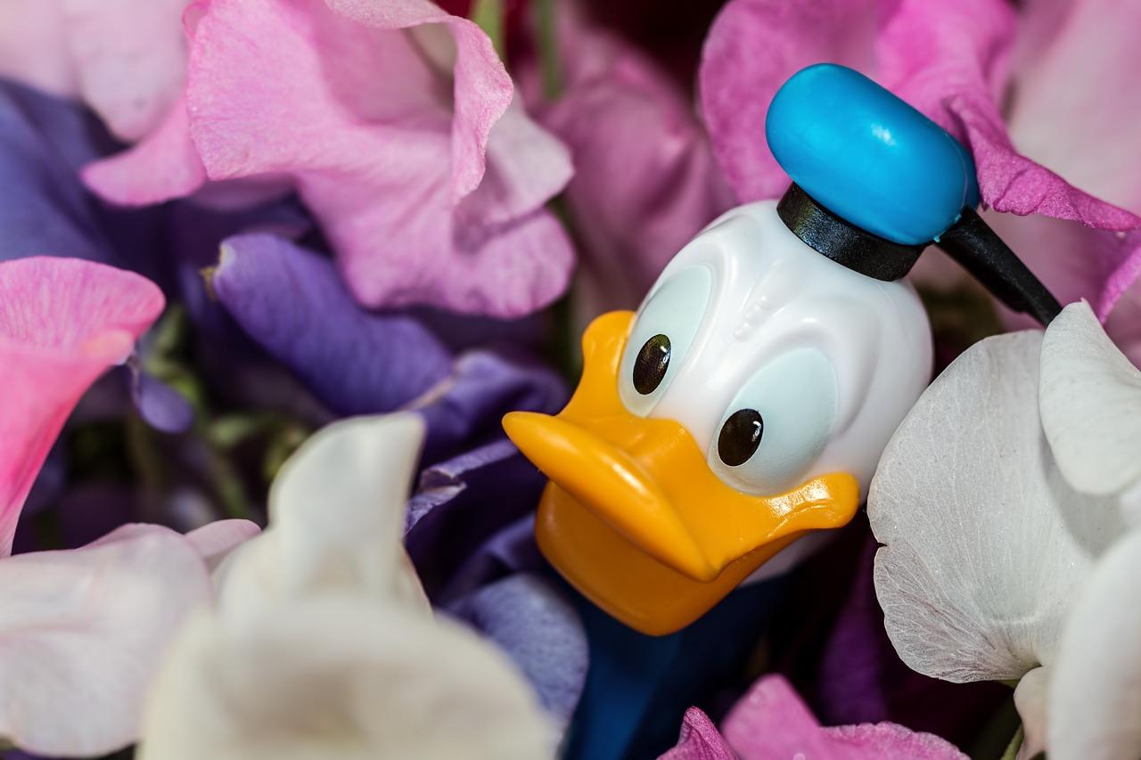 Disney kaczor donald zabawka