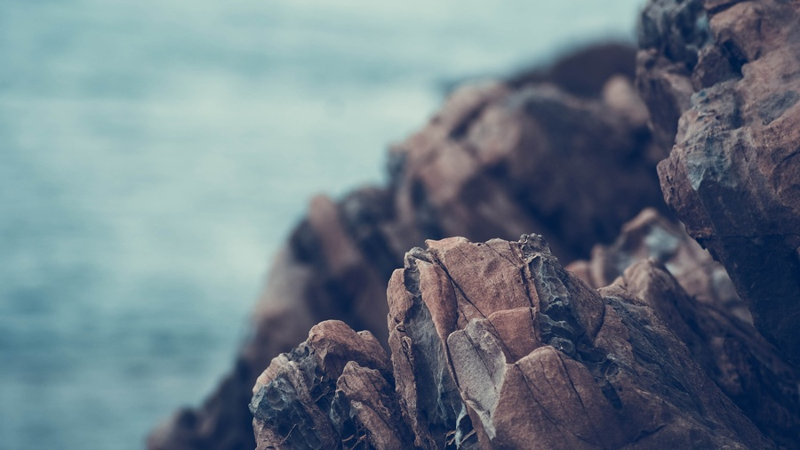 skały, skamieliny