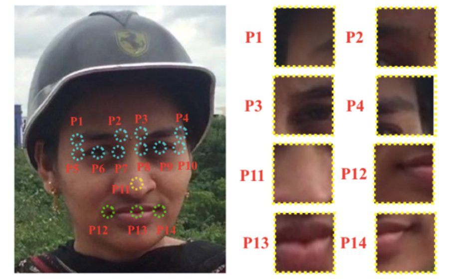 Disguised face identification