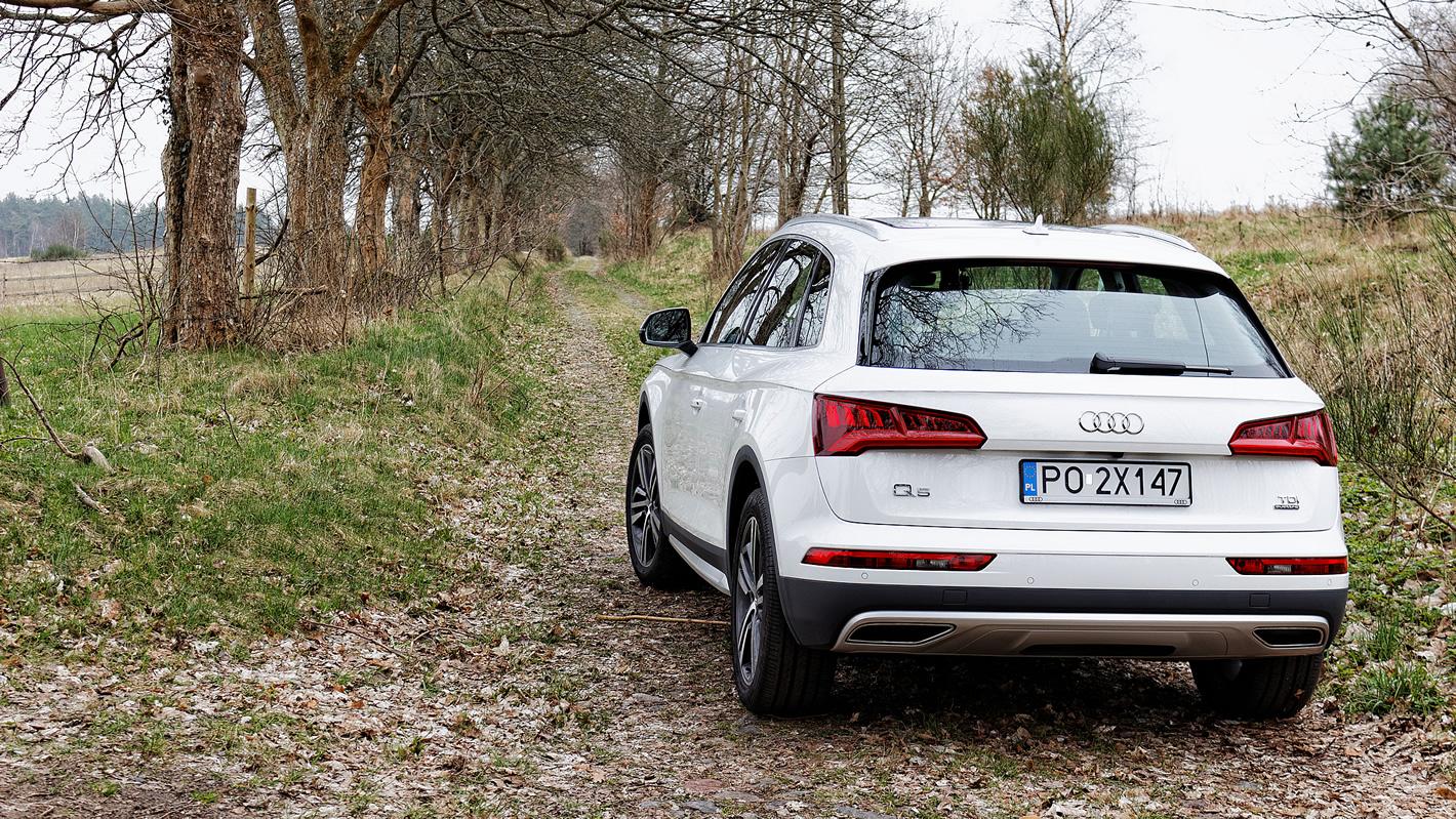 Audi Q5 z pneumatycznym zawieszeniem nie boi się wypraw w teren