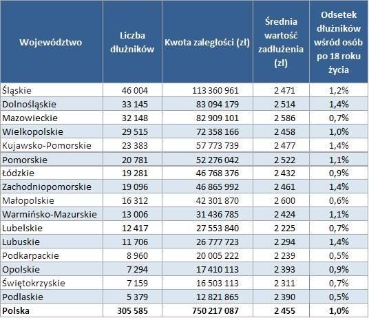 Zadłużenie Polaków - firmy telekomunikacyjne/wojewodztwa