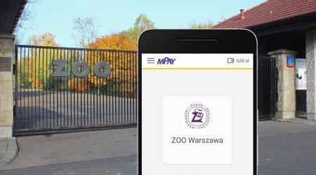 aplikacja mPay bilety pod zoo
