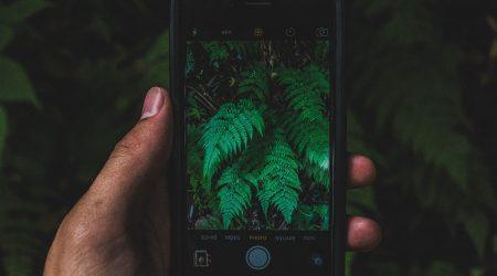 eko aplikacje