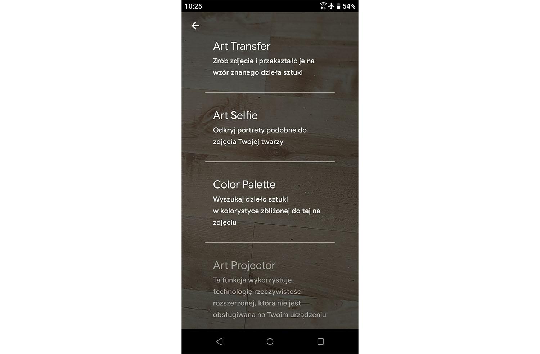 Google Arts & Culture art transfer
