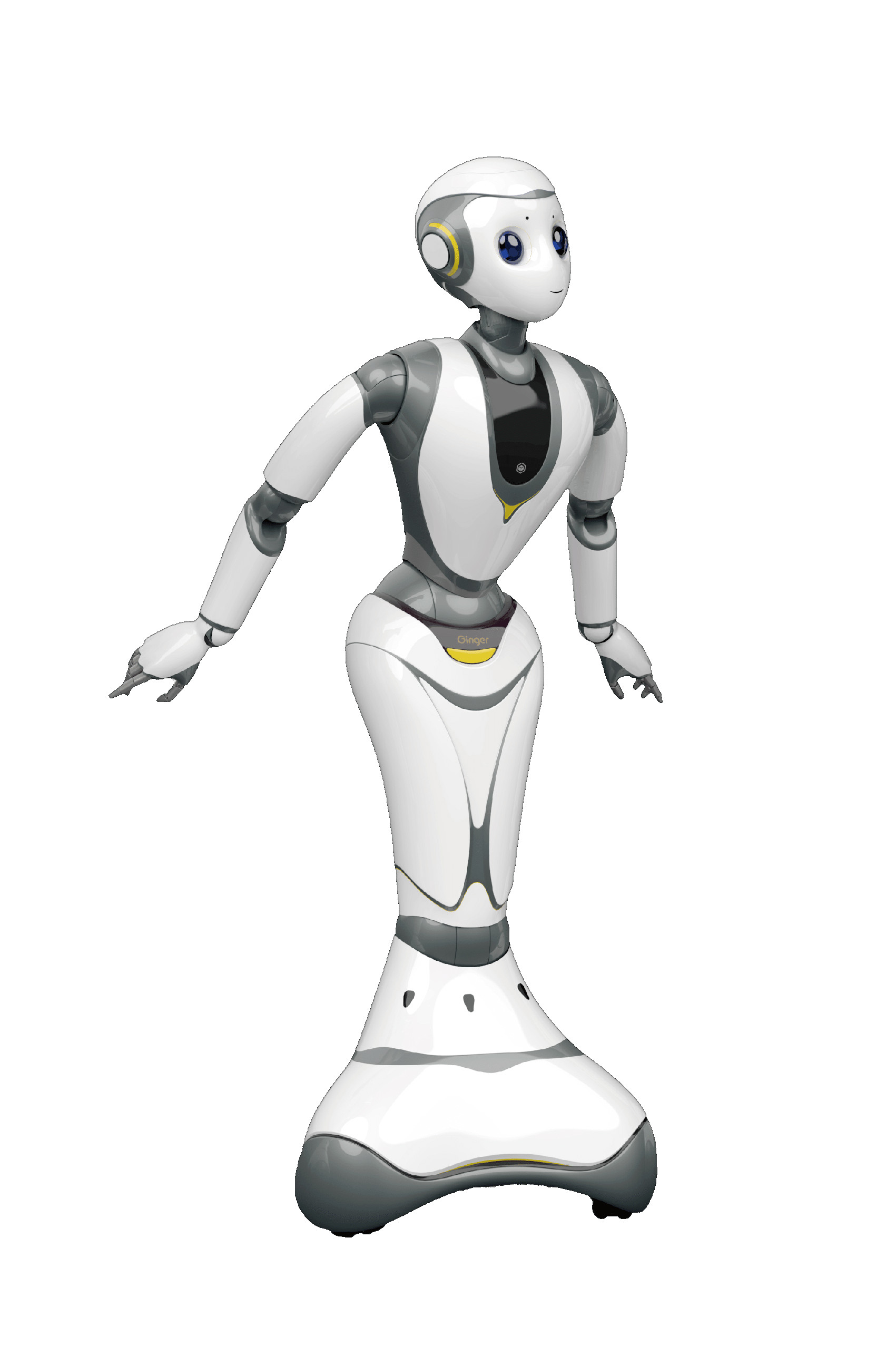 Robot Ginger