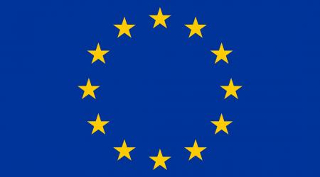 google flaga unii