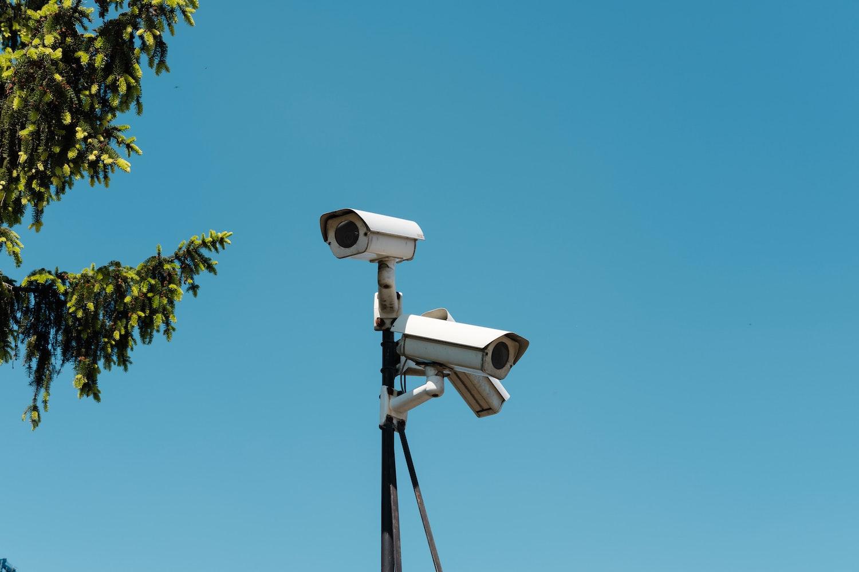 kamery drzewo niebo