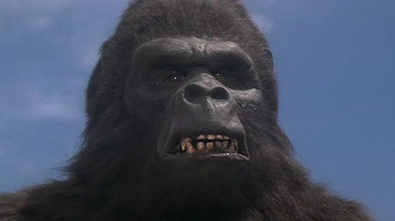 Kadr z filmu King Kong Żyje