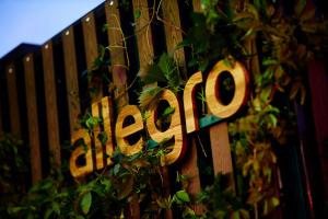 Będą szybsze dostawy paczek Smart!. Rusza Program Szybkich Wysyłek na Allegro